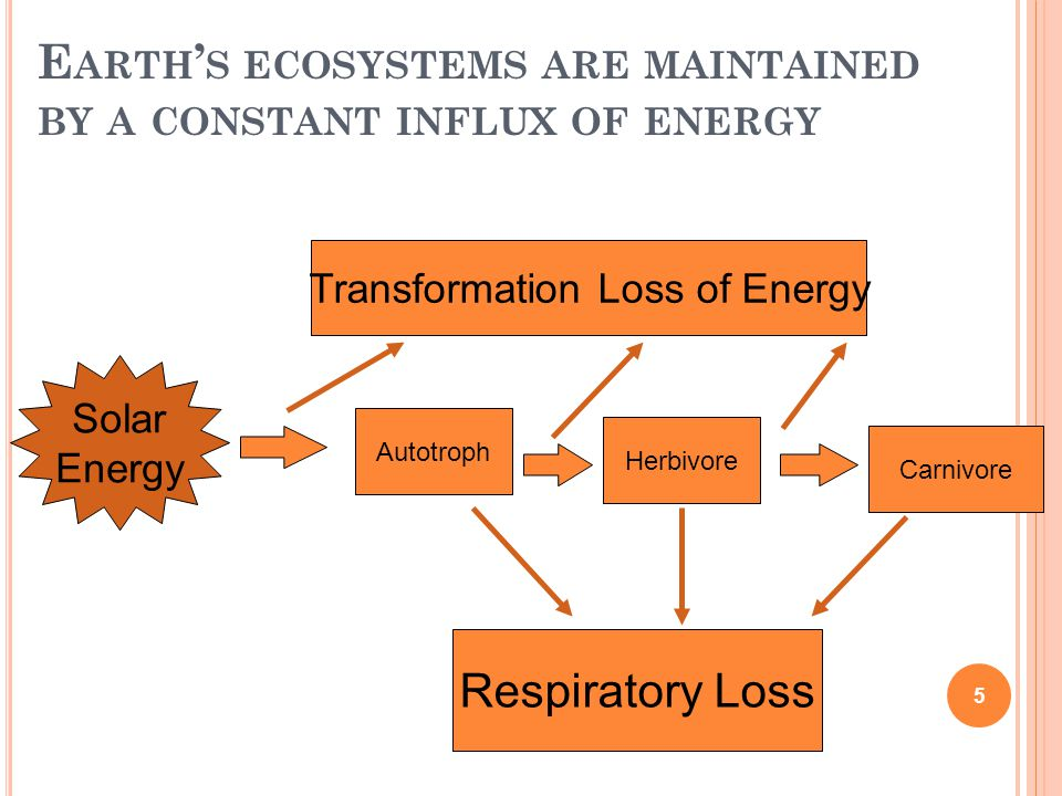 E ARTH ' S ECOSYSTEMS ARE MAINTAINED BY A CONSTANT INFLUX OF ENERGY Solar Energy Autotroph Herbivore Carnivore Respiratory Loss Transformation Loss of Energy 5