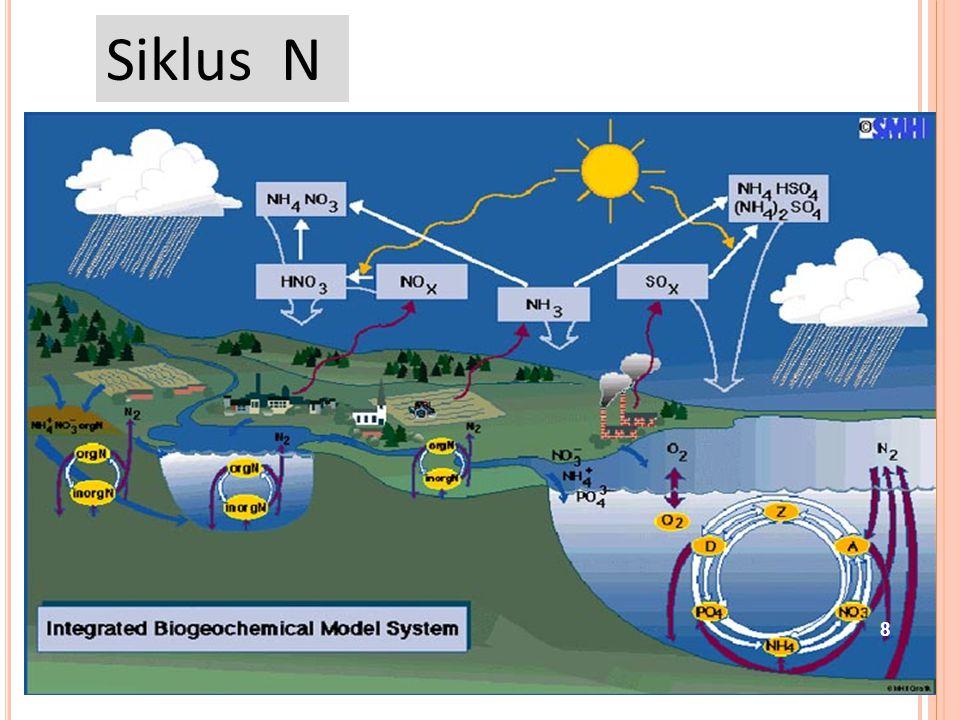 B IOGEOCHEMICAL C YCLE : Siklus utama yang akan dibahas: Siklus nitrogen Siklus oxygen Siklus phosphorus Siklus carbon Sirkulasi molekul kimia dalam s