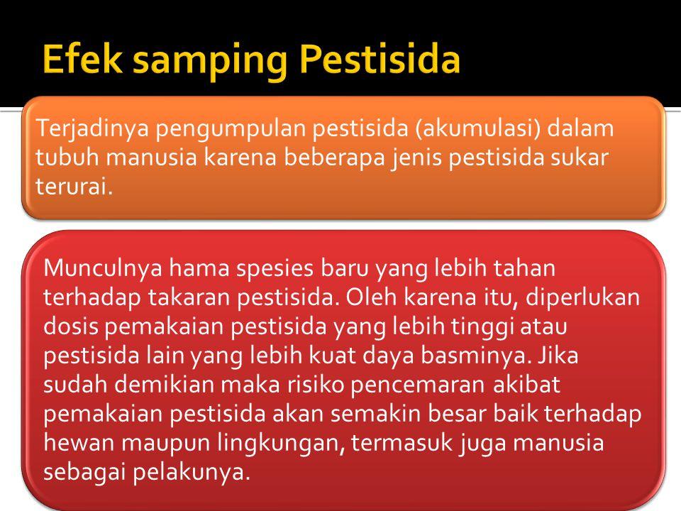 Terjadinya pengumpulan pestisida (akumulasi) dalam tubuh manusia karena beberapa jenis pestisida sukar terurai. Munculnya hama spesies baru yang lebih