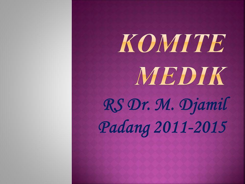 RS Dr. M. Djamil Padang 2011-2015