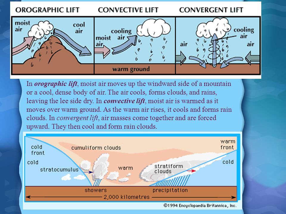 In orographic lift, moist air moves up the windward side of a mountain or a cool, dense body of air. The air cools, forms clouds, and rains, leaving t