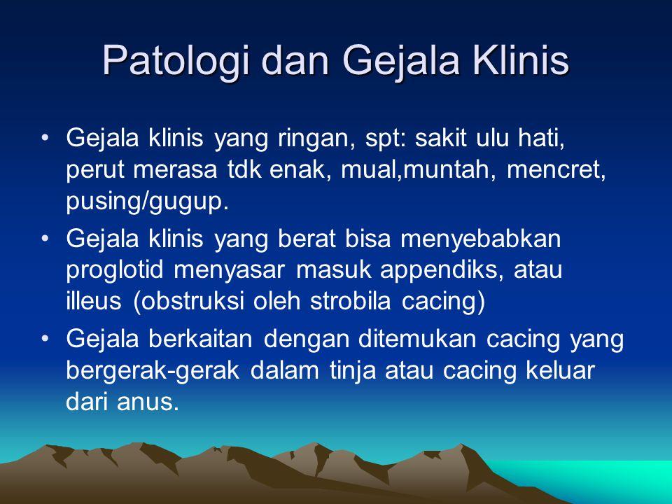 Patologi dan Gejala Klinis Gejala klinis yang ringan, spt: sakit ulu hati, perut merasa tdk enak, mual,muntah, mencret, pusing/gugup. Gejala klinis ya