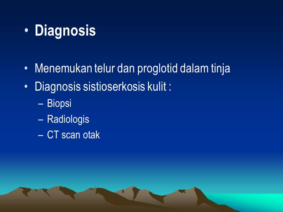 Diagnosis Menemukan telur dan proglotid dalam tinja Diagnosis sistioserkosis kulit : –Biopsi –Radiologis –CT scan otak