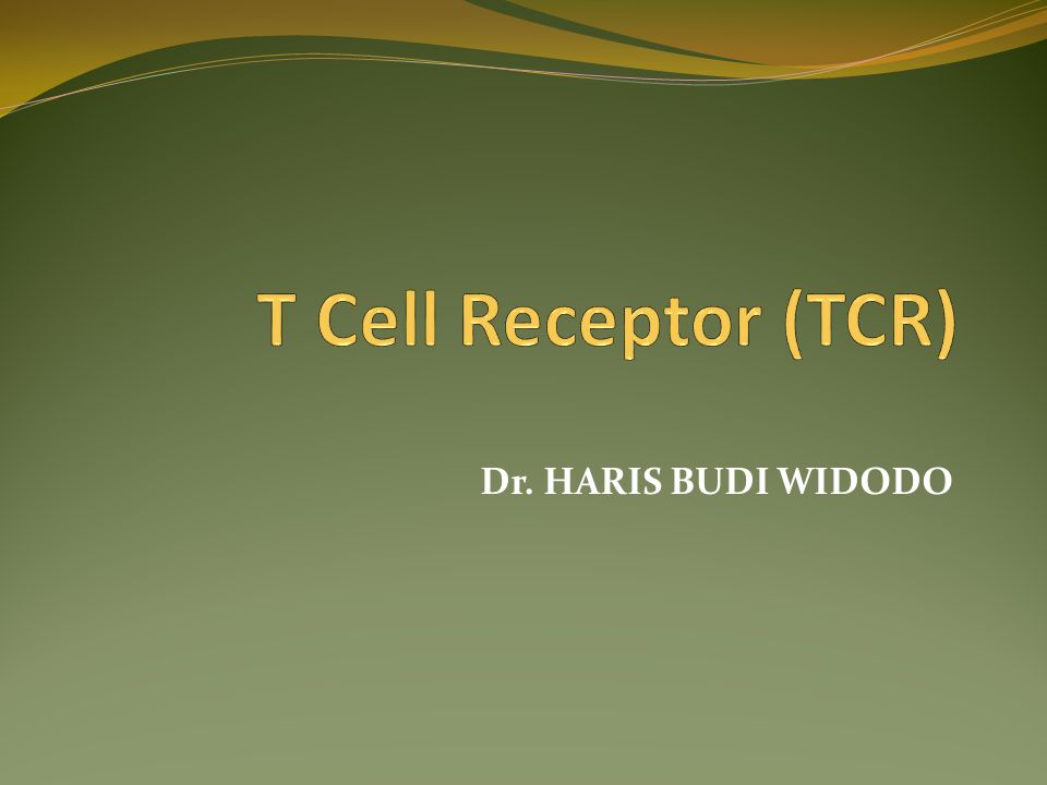 Dr. HARIS BUDI WIDODO