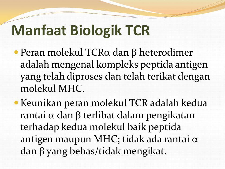 Manfaat Biologik TCR Peran molekul TCR  dan  heterodimer adalah mengenal kompleks peptida antigen yang telah diproses dan telah terikat dengan molek