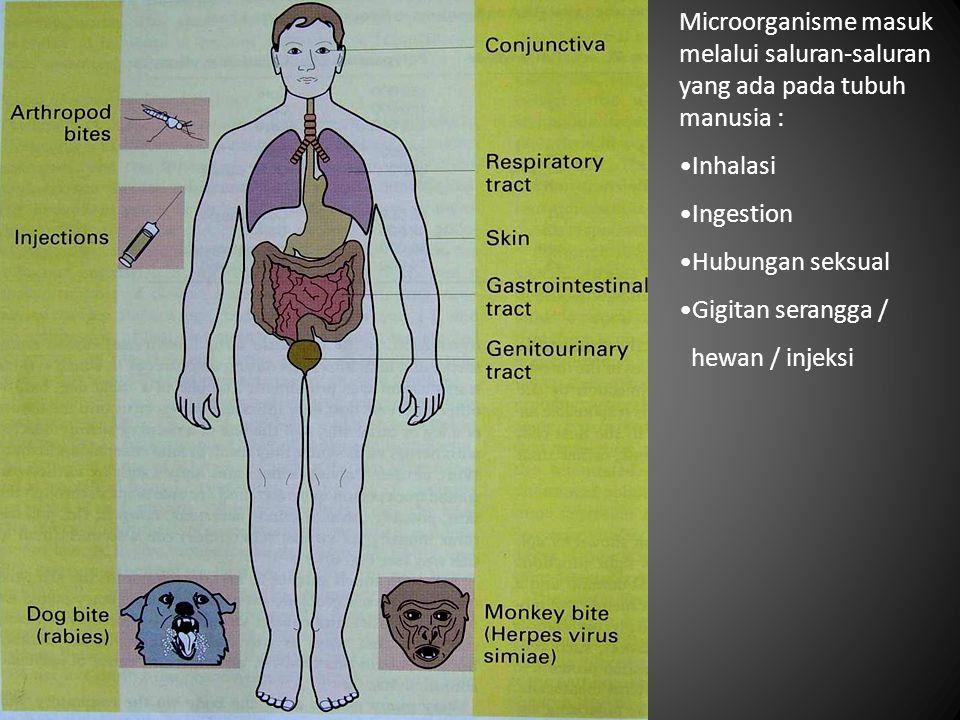 Microorganisme masuk melalui saluran-saluran yang ada pada tubuh manusia : Inhalasi Ingestion Hubungan seksual Gigitan serangga / hewan / injeksi