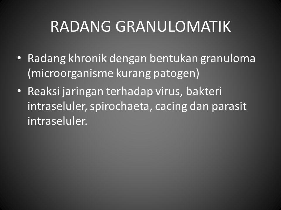 RADANG GRANULOMATIK Radang khronik dengan bentukan granuloma (microorganisme kurang patogen) Reaksi jaringan terhadap virus, bakteri intraseluler, spi