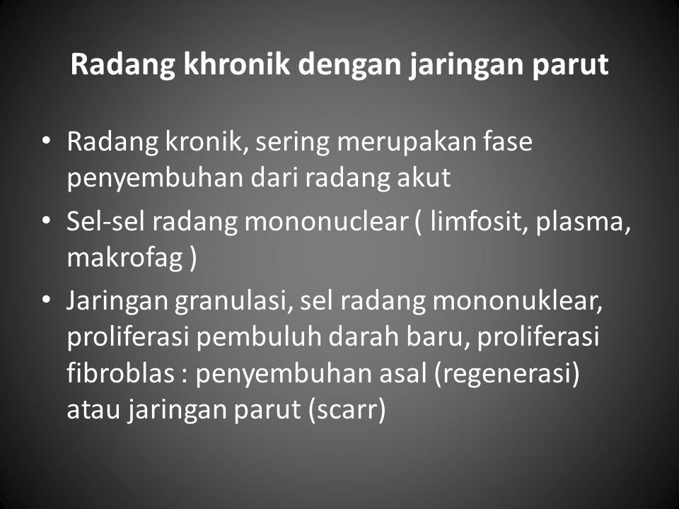 Radang khronik dengan jaringan parut Radang kronik, sering merupakan fase penyembuhan dari radang akut Sel-sel radang mononuclear ( limfosit, plasma,