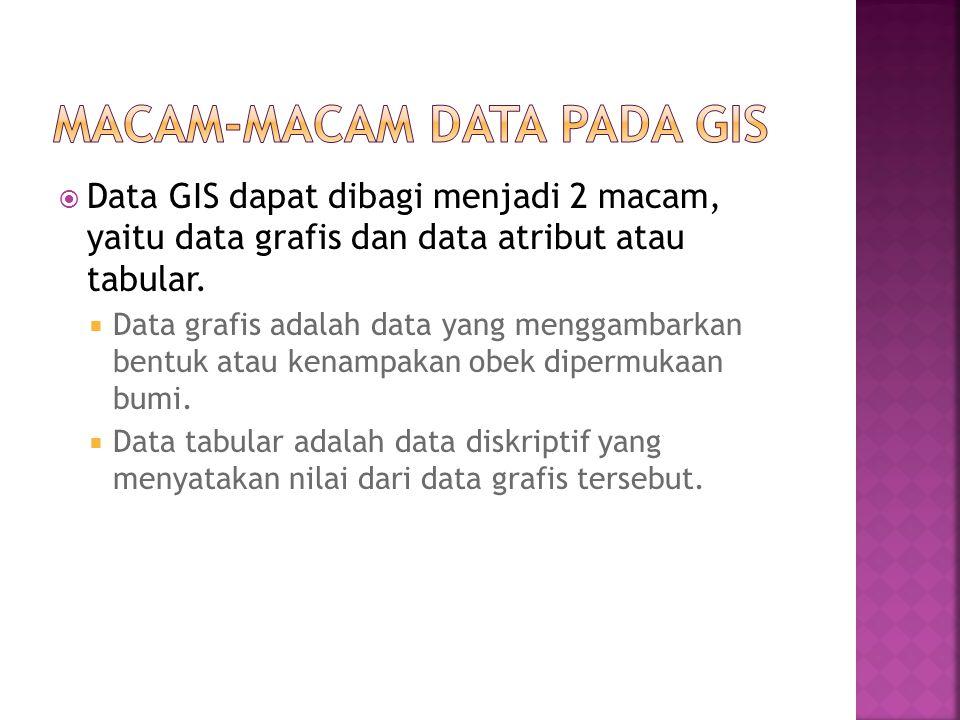  Data GIS dapat dibagi menjadi 2 macam, yaitu data grafis dan data atribut atau tabular.  Data grafis adalah data yang menggambarkan bentuk atau ken