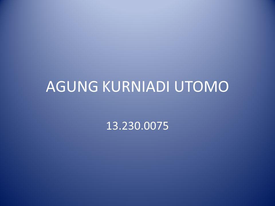 AGUNG KURNIADI UTOMO 13.230.0075