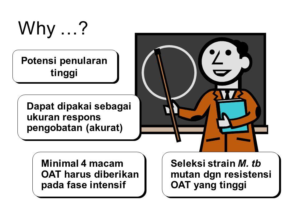 Why …? Potensi penularan tinggi Dapat dipakai sebagai ukuran respons pengobatan (akurat) Minimal 4 macam OAT harus diberikan pada fase intensif Seleks