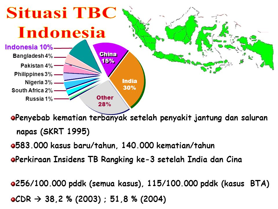 Indonesia 10% Bangladesh 4% China 15% China 15% India 30% Other 28% Philippines 3% Pakistan 4% Nigeria 3% South Africa 2% Russia 1% Penyebab kematian