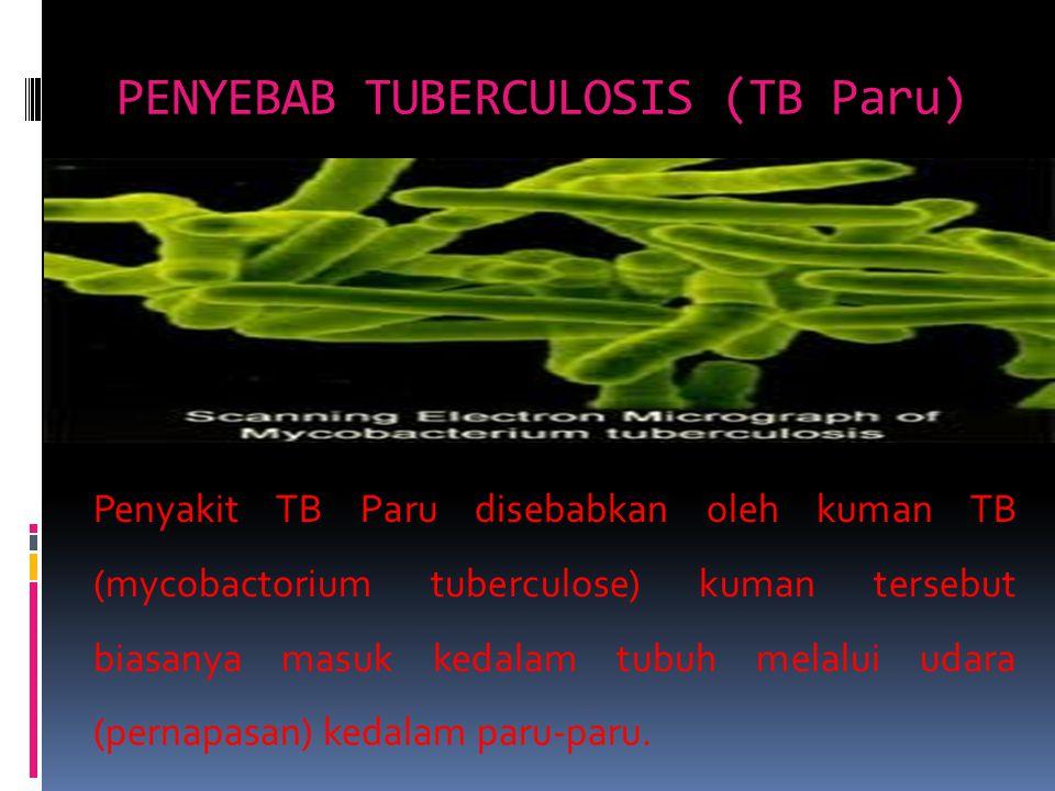 PENYEBAB TUBERCULOSIS (TB Paru) Penyakit TB Paru disebabkan oleh kuman TB (mycobactorium tuberculose) kuman tersebut biasanya masuk kedalam tubuh mela