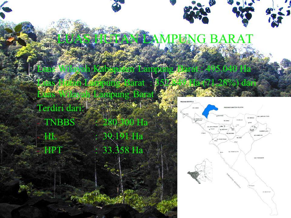 LUAS HUTAN LAMPUNG BARAT Luas Wilayah Kabupaten Lampung Barat : 495.040 Ha Luas Hutan Lampung Barat : 352.849 Ha (71,28%) dari Luas Wilayah Lampung Barat Terdiri dari: - TNBBS: 280.300 Ha - HL: 39.191 Ha - HPT: 33.358 Ha