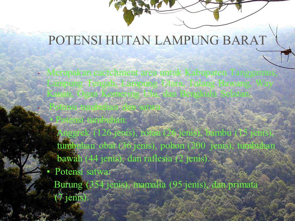 POTENSI HUTAN LAMPUNG BARAT - Merupakan cactchment area untuk Kabupaten Tanggamus, Lampung Tengah, Lampung Utara, Tulang Bawang, Way Kanan, Ogan Komering Ulu, dan Bengkulu Selatan.