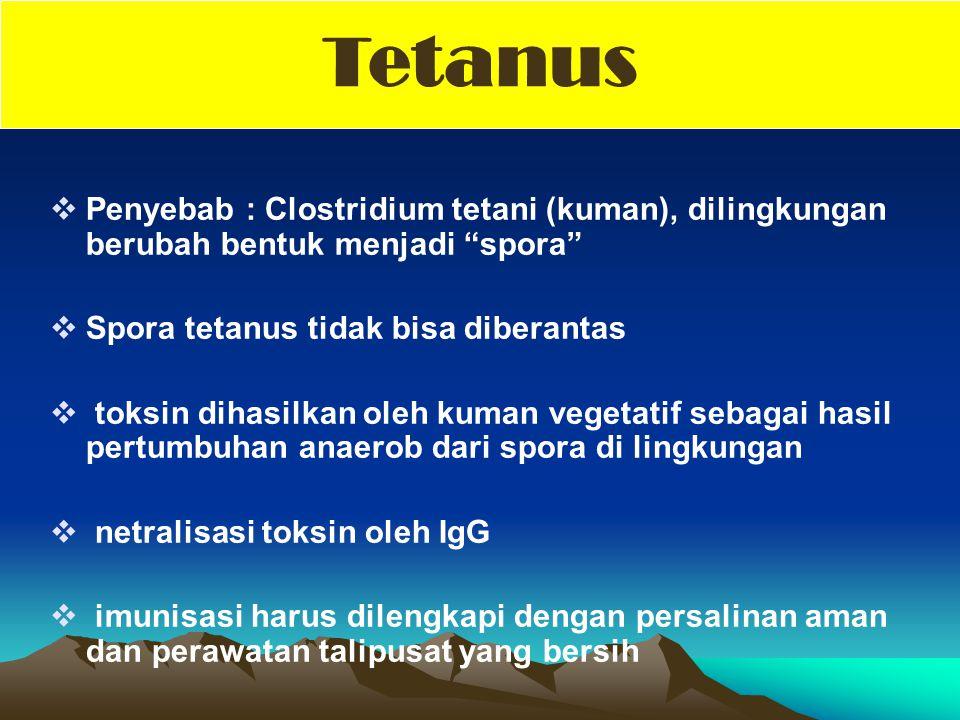 " Penyebab : Clostridium tetani (kuman), dilingkungan berubah bentuk menjadi ""spora""  Spora tetanus tidak bisa diberantas  toksin dihasilkan oleh ku"
