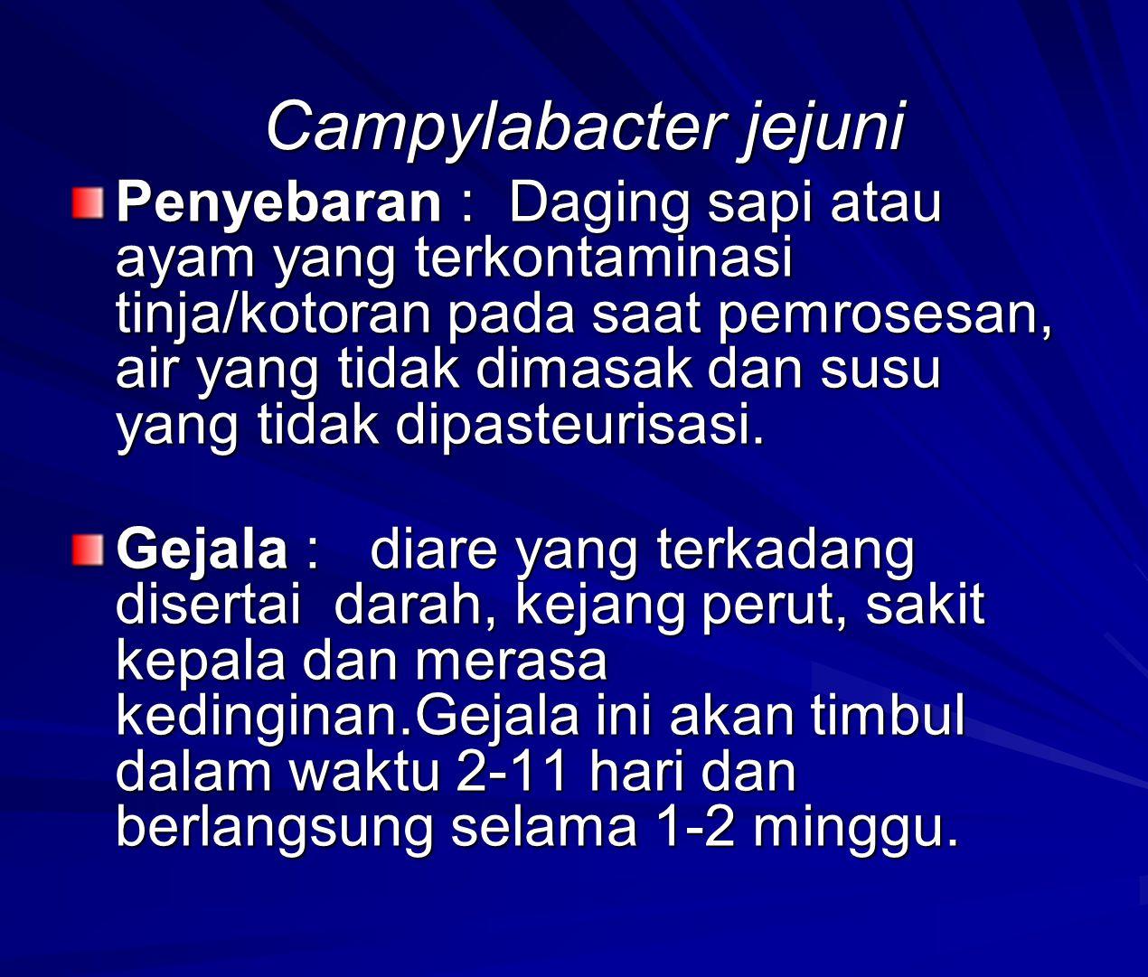 Campylabacter jejuni Penyebaran : Daging sapi atau ayam yang terkontaminasi tinja/kotoran pada saat pemrosesan, air yang tidak dimasak dan susu yang tidak dipasteurisasi.