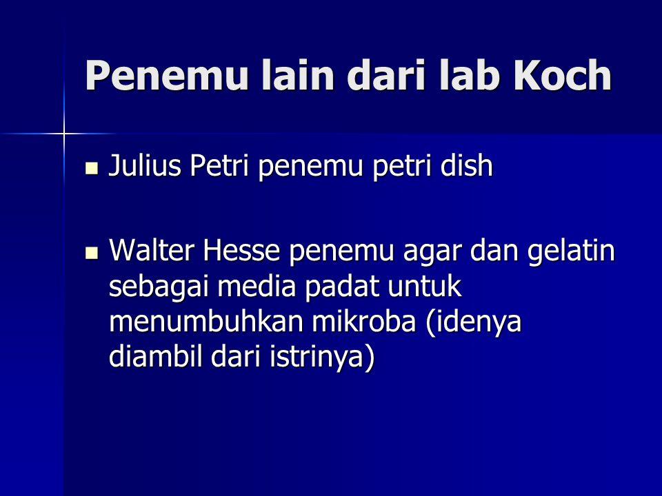 Penemu lain dari lab Koch Julius Petri penemu petri dish Julius Petri penemu petri dish Walter Hesse penemu agar dan gelatin sebagai media padat untuk menumbuhkan mikroba (idenya diambil dari istrinya) Walter Hesse penemu agar dan gelatin sebagai media padat untuk menumbuhkan mikroba (idenya diambil dari istrinya)