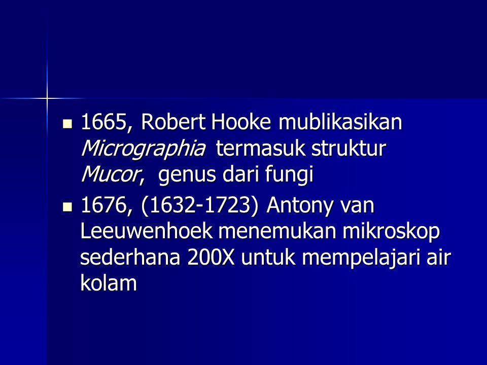 1665, Robert Hooke mublikasikan Micrographia termasuk struktur Mucor, genus dari fungi 1665, Robert Hooke mublikasikan Micrographia termasuk struktur Mucor, genus dari fungi 1676, (1632-1723) Antony van Leeuwenhoek menemukan mikroskop sederhana 200X untuk mempelajari air kolam 1676, (1632-1723) Antony van Leeuwenhoek menemukan mikroskop sederhana 200X untuk mempelajari air kolam