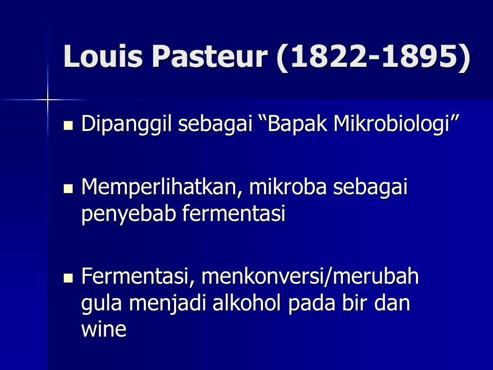 Louis Pasteur (1822-1895) Dipanggil sebagai Bapak Mikrobiologi Dipanggil sebagai Bapak Mikrobiologi Memperlihatkan, mikroba sebagai penyebab fermentasi Memperlihatkan, mikroba sebagai penyebab fermentasi Fermentasi, menkonversi/merubah gula menjadi alkohol pada bir dan wine Fermentasi, menkonversi/merubah gula menjadi alkohol pada bir dan wine