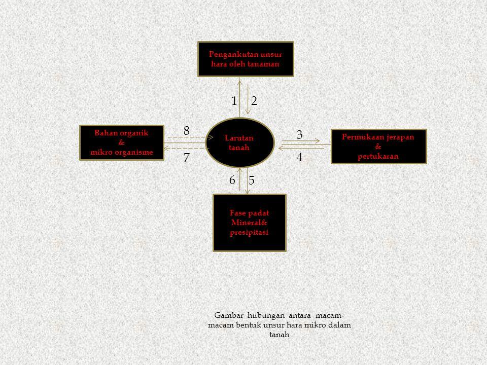 Larutan tanah Pengankutan unsur hara oleh tanaman Bahan organik & mikro organisme Permukaan jerapan & pertukaran Fase padat Mineral& presipitasi 8 7 1 5 6 3 2 4 Gambar hubungan antara macam- macam bentuk unsur hara mikro dalam tanah