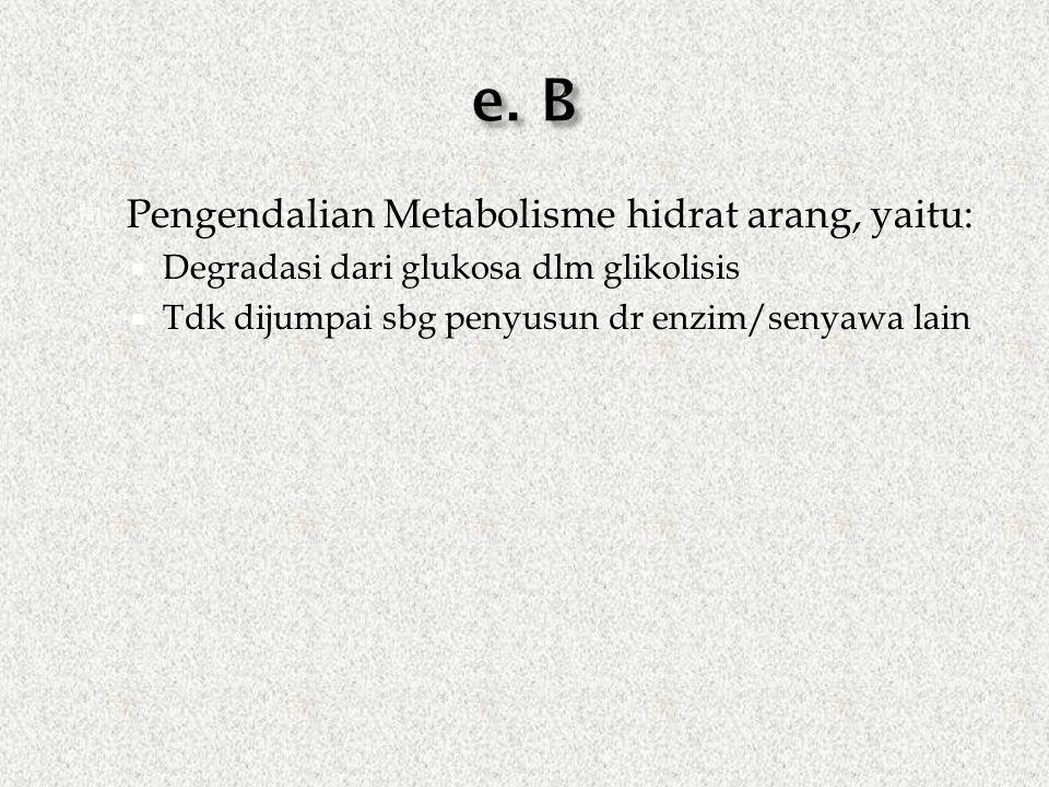  Pengendalian Metabolisme hidrat arang, yaitu:  Degradasi dari glukosa dlm glikolisis  Tdk dijumpai sbg penyusun dr enzim/senyawa lain
