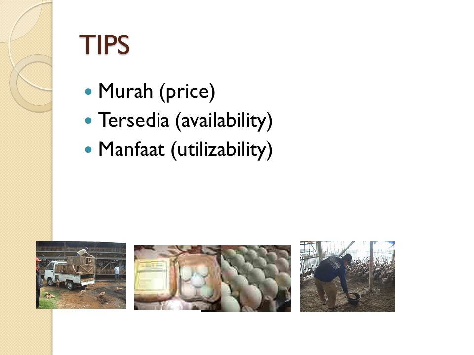 TIPS Murah (price) Tersedia (availability) Manfaat (utilizability)