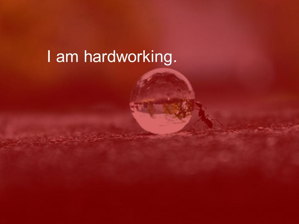 I am hardworking.