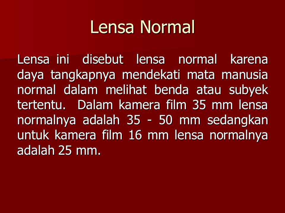 Lensa Normal Lensa ini disebut lensa normal karena daya tangkapnya mendekati mata manusia normal dalam melihat benda atau subyek tertentu. Dalam kamer