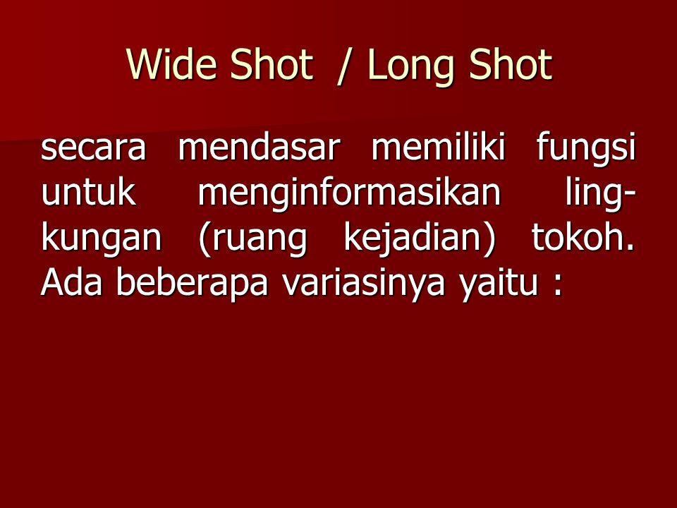 Wide Shot / Long Shot secara mendasar memiliki fungsi untuk menginformasikan ling- kungan (ruang kejadian) tokoh. Ada beberapa variasinya yaitu :