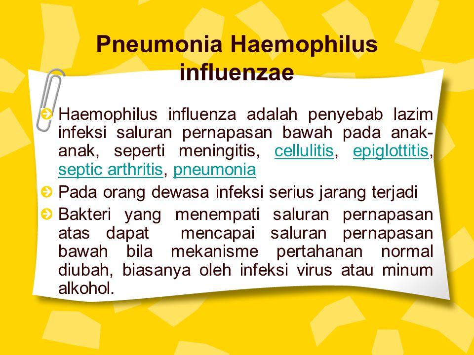 Pneumonia Haemophilus influenzae Haemophilus influenza adalah penyebab lazim infeksi saluran pernapasan bawah pada anak- anak, seperti meningitis, cel