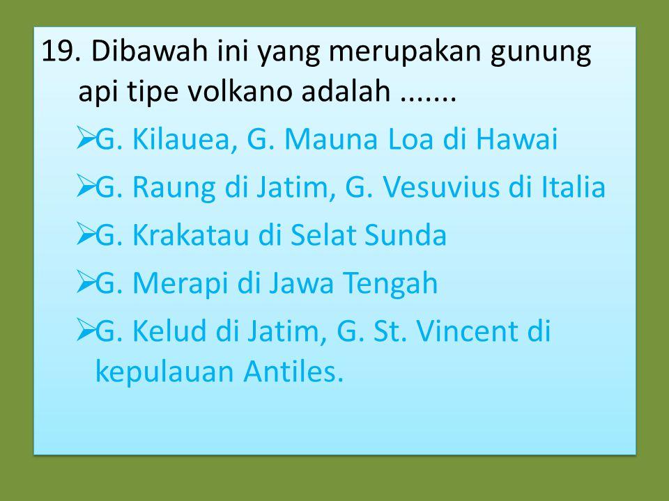 18. Beriku ini yang termasuk tenaga Endogen adalah…  Tektonisme, vulkanisme, mass wasting  Tektonisme, gempa bumi, sedimentasi  Gempa bumi, vulkani