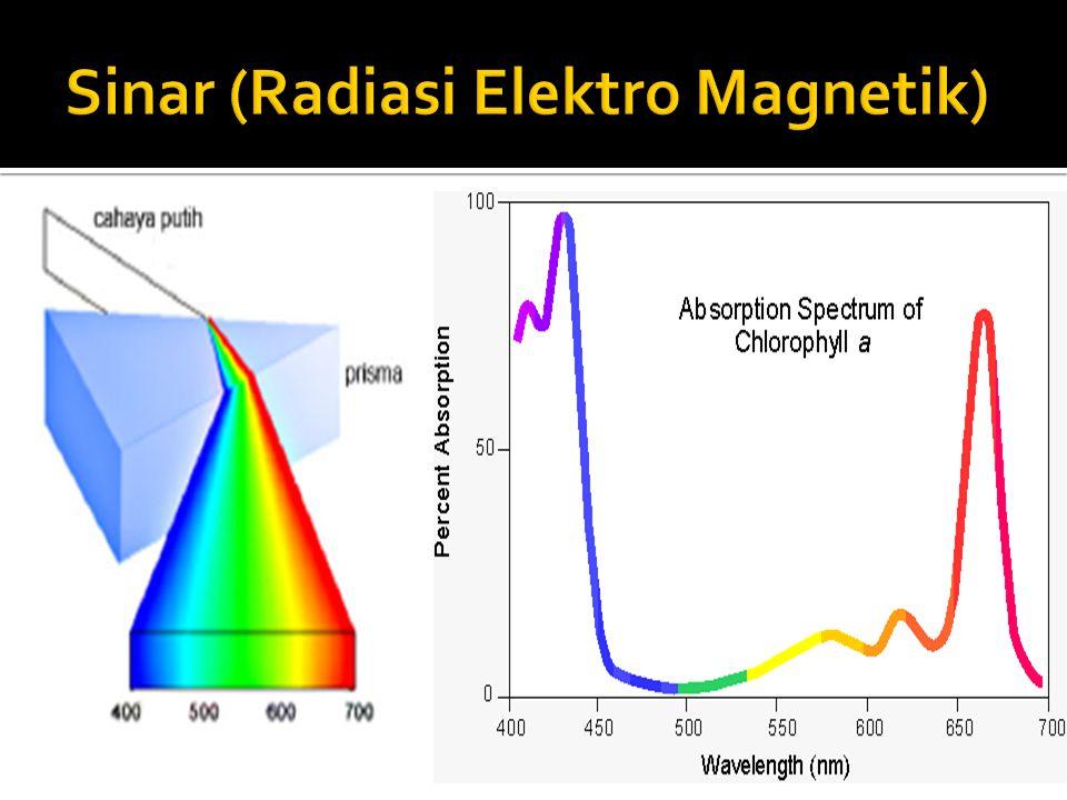 Harris, 1987 Cahaya (sinar) dengan tenaga radian P 0 menabrak permukaan pertama sampel dengan ketebalan = b cm Tenaga radian P ditransmisikan (diteruskan) Tenaga radian R 2 dipantulkan