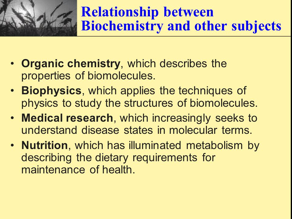 History of Biochemistry Then to understand how the biomolecules make life to be life.