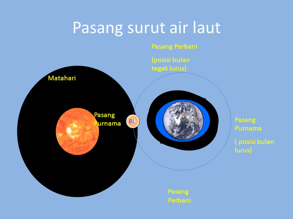 Pasang surut air laut Matahari BL Pasang Purnama ( posisi bulan lurus) Pasang Perbani (posisi bulan tegak lurus) Pasang Perbani Pasang Purnama