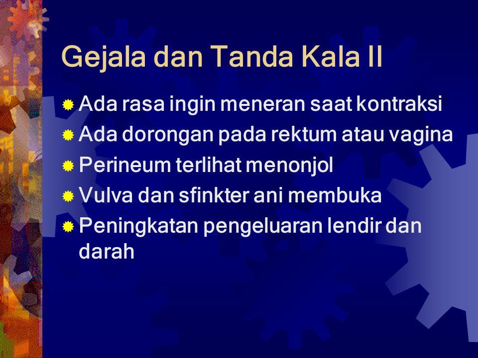 Gejala dan Tanda Kala II  Ada rasa ingin meneran saat kontraksi  Ada dorongan pada rektum atau vagina  Perineum terlihat menonjol  Vulva dan sfink