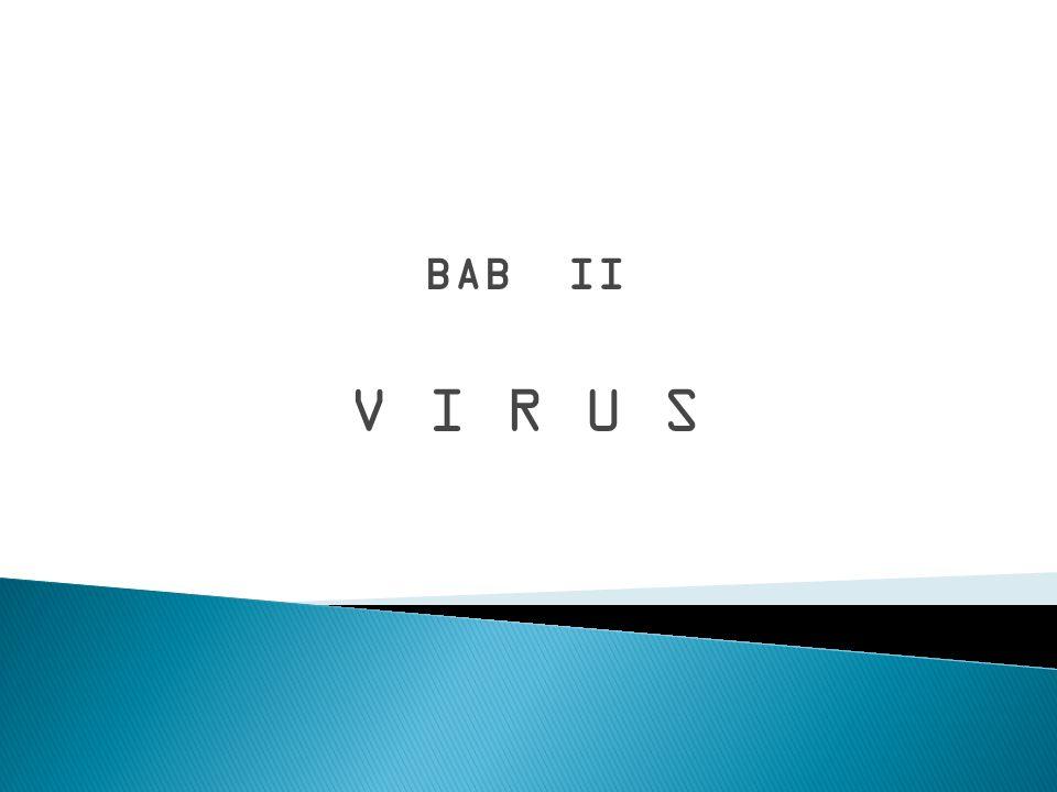 BAB II V I R U S