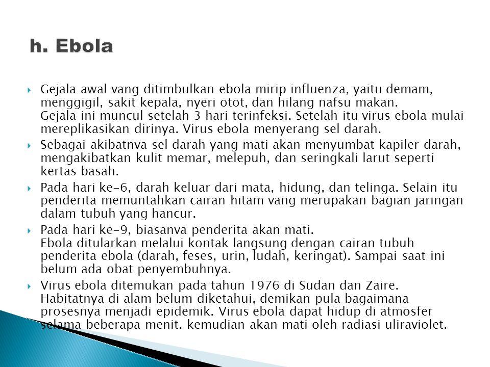  Gejala awal vang ditimbulkan ebola mirip influenza, yaitu demam, menggigil, sakit kepala, nyeri otot, dan hilang nafsu makan. Gejala ini muncul sete