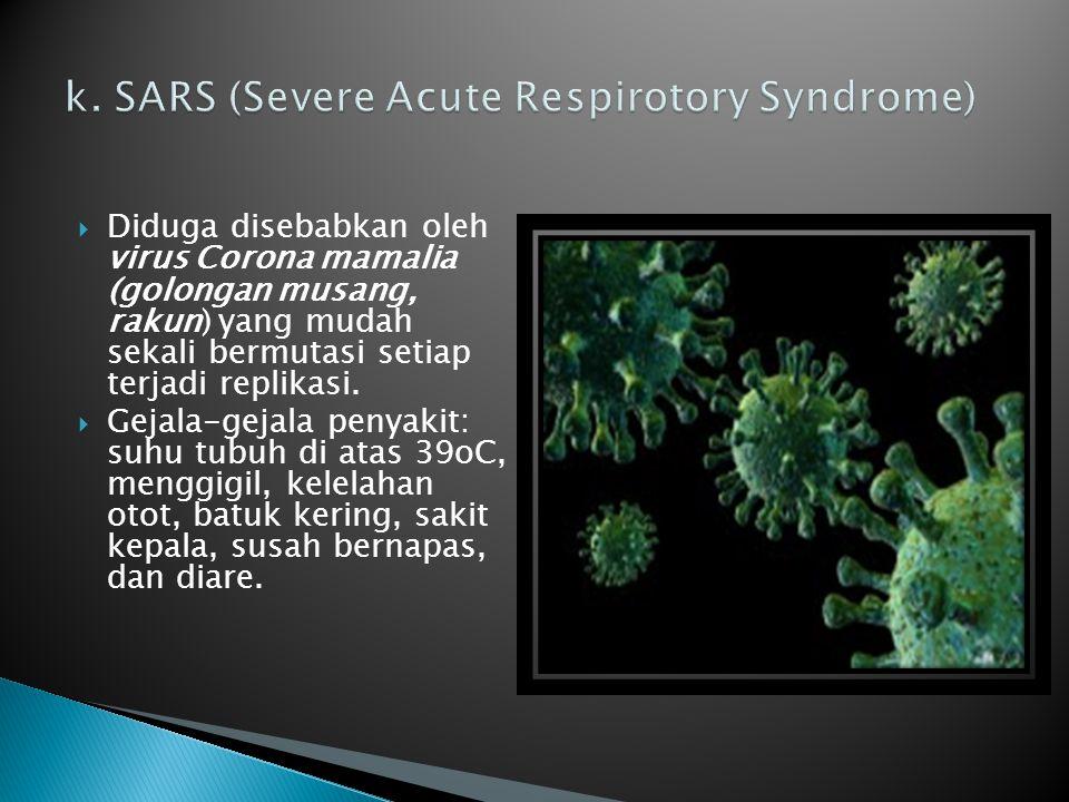  Diduga disebabkan oleh virus Corona mamalia (golongan musang, rakun) yang mudah sekali bermutasi setiap terjadi replikasi.  Gejala-gejala penyakit: