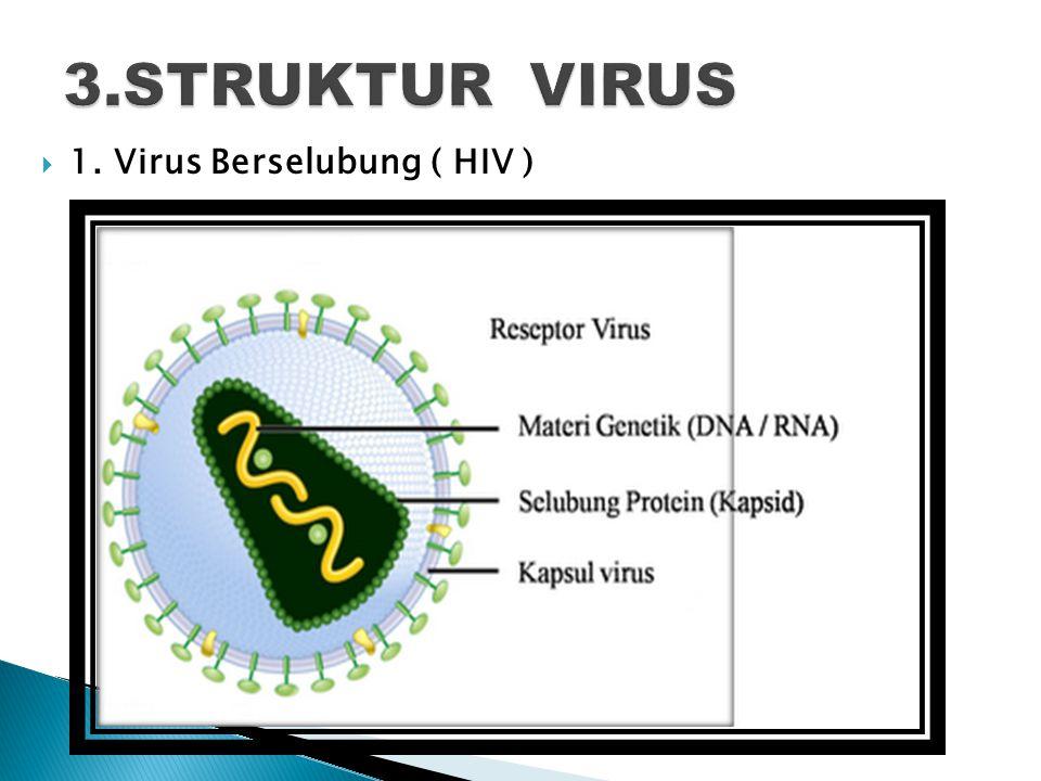  1. Virus Berselubung ( HIV )