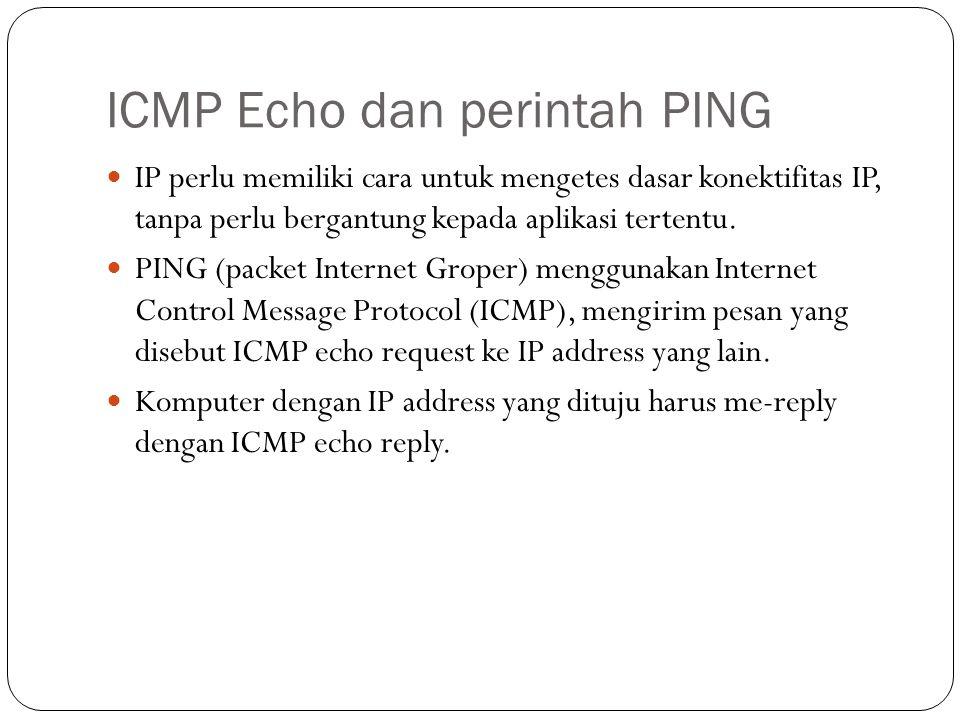 ICMP Echo dan perintah PING IP perlu memiliki cara untuk mengetes dasar konektifitas IP, tanpa perlu bergantung kepada aplikasi tertentu.