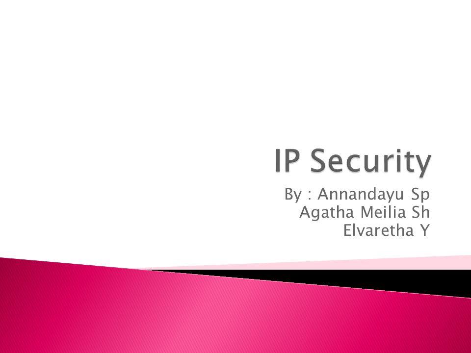  IPsec merupakan suatu set ektensi protokol dari Internet Protocol (IP) yang dikeluarkan oleh Internet Engineering Task Force (IETF).