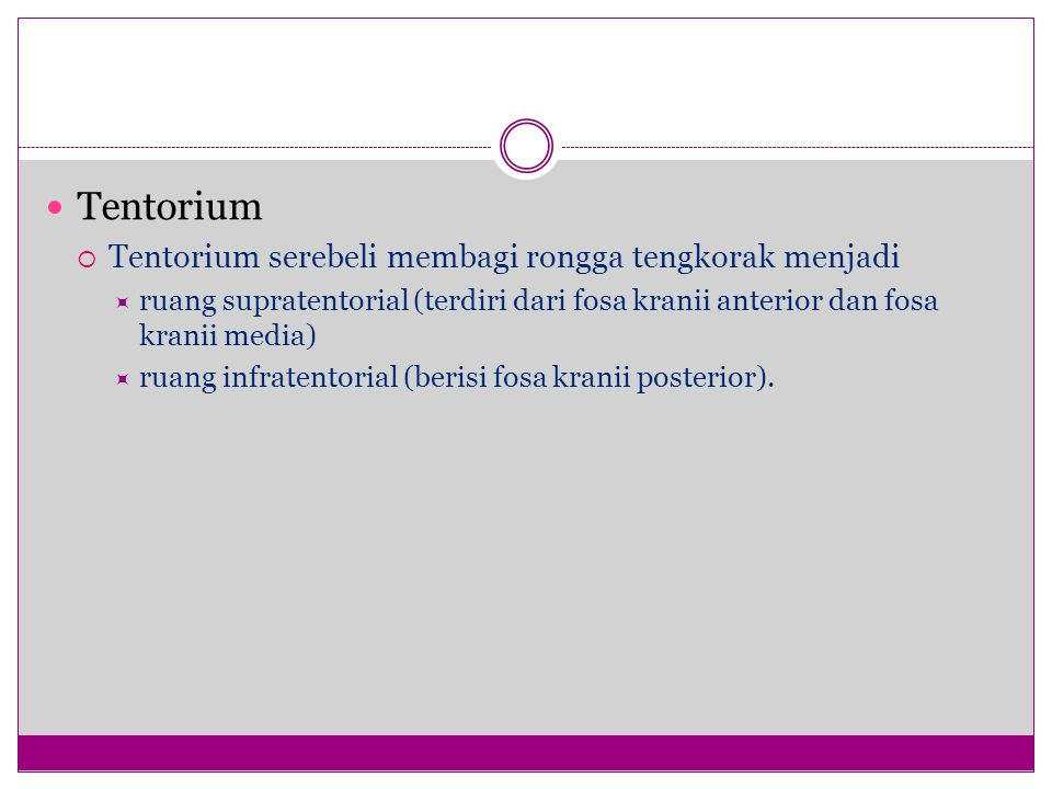 Tentorium  Tentorium serebeli membagi rongga tengkorak menjadi  ruang supratentorial (terdiri dari fosa kranii anterior dan fosa kranii media)  ruang infratentorial (berisi fosa kranii posterior).