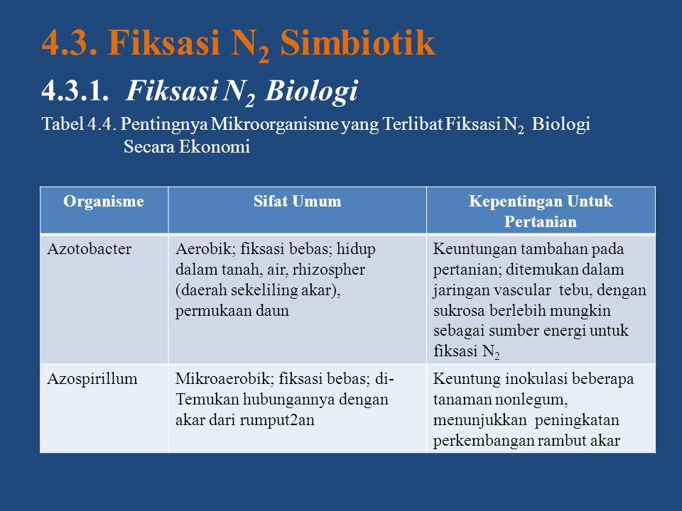 4.3. Fiksasi N 2 Simbiotik 4.3.1. Fiksasi N 2 Biologi Tabel 4.4. Pentingnya Mikroorganisme yang Terlibat Fiksasi N 2 Biologi Secara Ekonomi OrganismeS