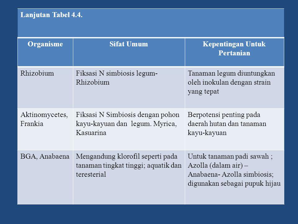 Lanjutan Tabel 4.4. OrganismeSifat UmumKepentingan Untuk Pertanian RhizobiumFiksasi N simbiosis legum- Rhizobium Tanaman legum diuntungkan oleh inokul