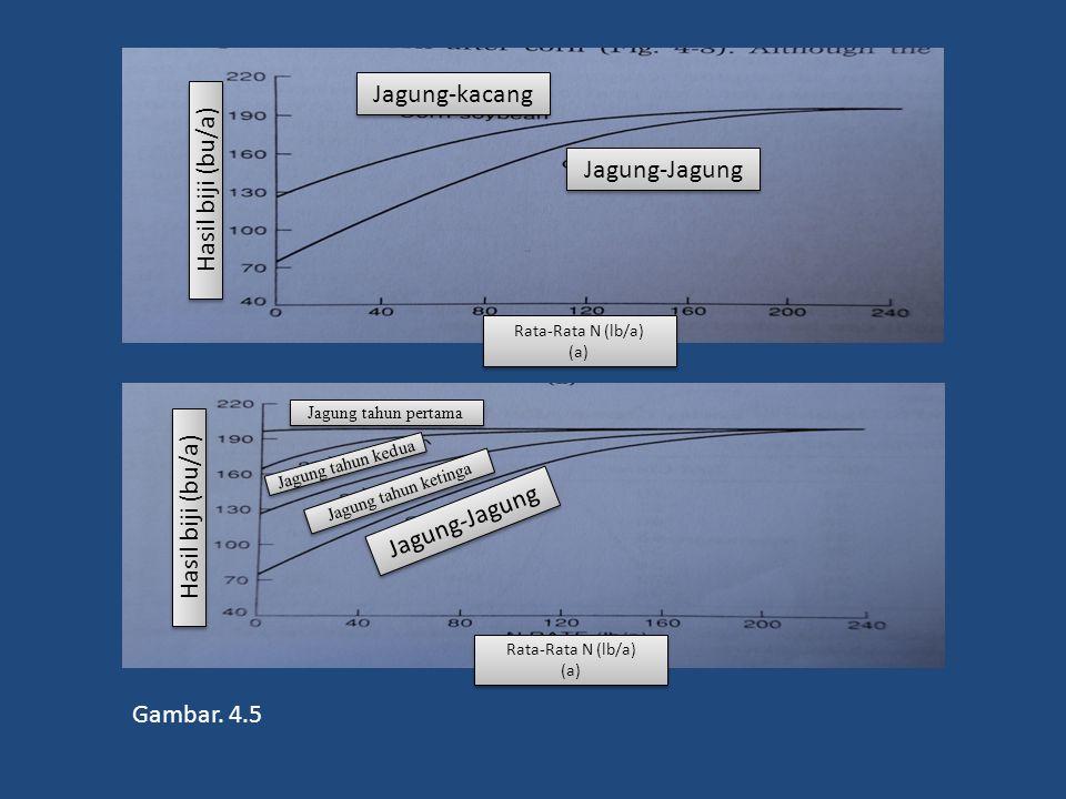 Gambar. 4.5 Jagung-Jagung Jagung-kacang Rata-Rata N (lb/a) (a) Rata-Rata N (lb/a) (a) Hasil biji (bu/a) Rata-Rata N (lb/a) (a) Rata-Rata N (lb/a) (a)