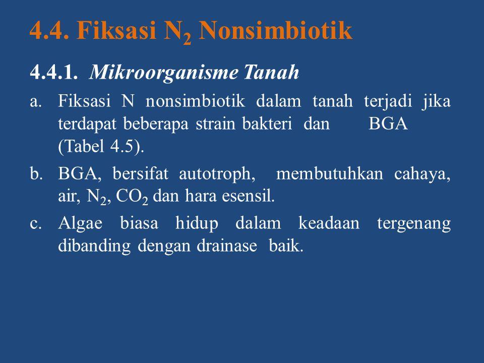 4.4. Fiksasi N 2 Nonsimbiotik 4.4.1. Mikroorganisme Tanah a.Fiksasi N nonsimbiotik dalam tanah terjadi jika terdapat beberapa strain bakteri danBGA (T