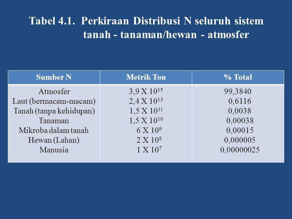 N 2 O NO N 2 N 2 O NO NO 2 NO 3 - NH 4 + R-NH 2 Ammonifikasi Aminisasi Bahan organik Tanah NO 3 - NO 2 - NO 3 - /NH 4 + NO 3 - Residu tanaman&hewan Hujan Kilat 1 Fiksasi N 2 Fiksasi NH 4 + Liat 2:1 Denitrifikasi Volatilisasi NH 3 NH 3 6 3 7 2 5 Pencucian Nitrifikasi 4 Mineralisasi Gambar 4.1.