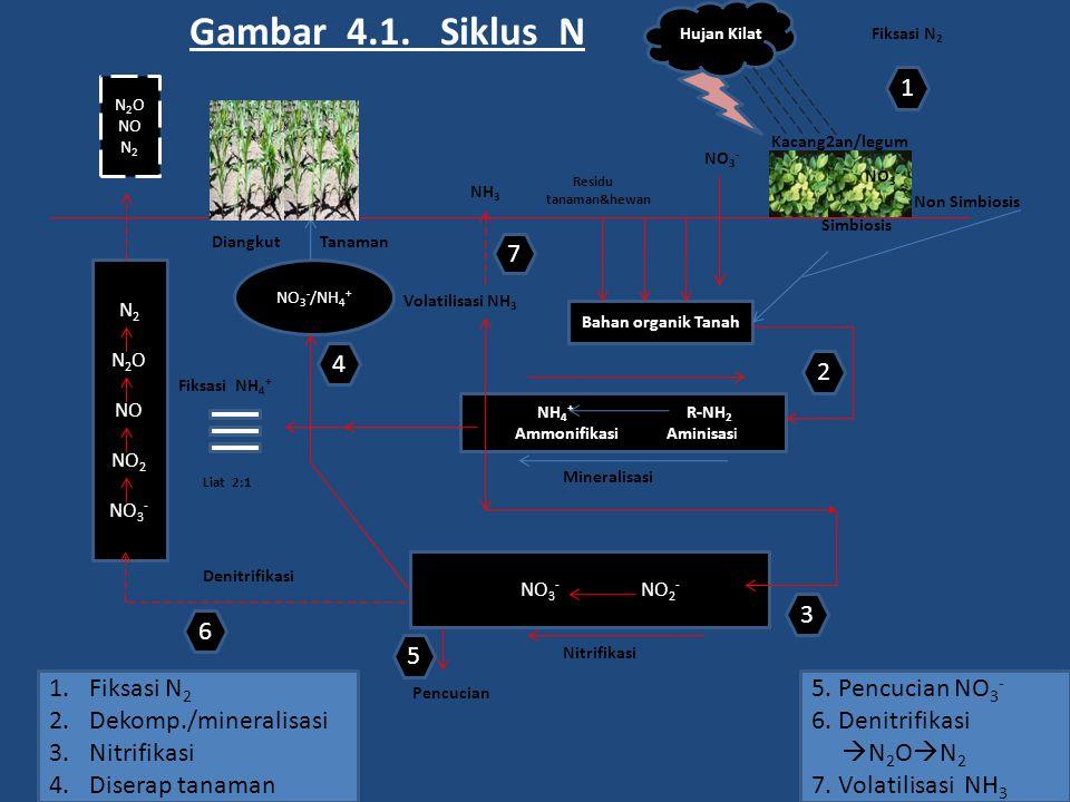 N 2 O NO N 2 N 2 O NO NO 2 NO 3 - NH 4 + R-NH 2 Ammonifikasi Aminisasi Bahan organik Tanah NO 3 - NO 2 - NO 3 - /NH 4 + NO 3 - Residu tanaman&hewan Hu