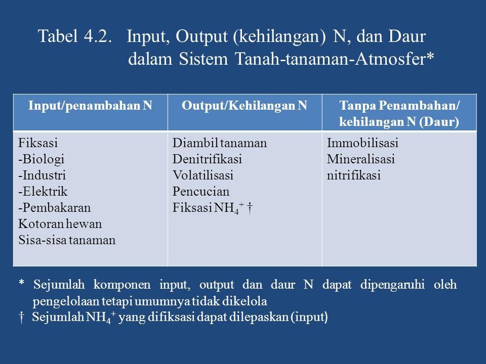 Tabel 4.2. Input, Output (kehilangan) N, dan Daur dalam Sistem Tanah-tanaman-Atmosfer* Input/penambahan NOutput/Kehilangan NTanpa Penambahan/ kehilang